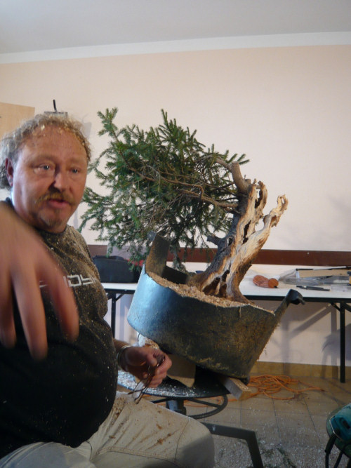 bonsai carving