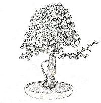 threadgrafting bonsai